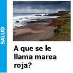 a_que_se_le_llama_marea_roja_portada-150x150