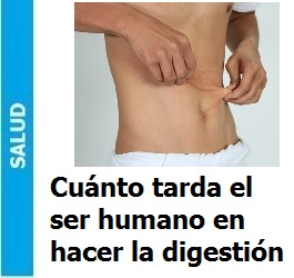 cuanto_tarda_el_ser_humano_en_hacer_la_digestión_Portada