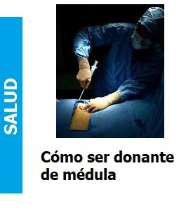 como_ser_donante_de_medula_Portada